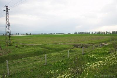 Сельскохозяйственных земель