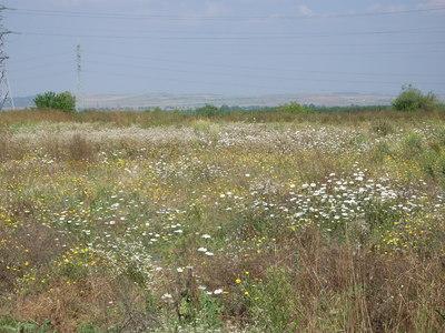Хубав имот, близо до Варна