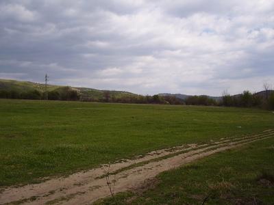 Flat plot of land
