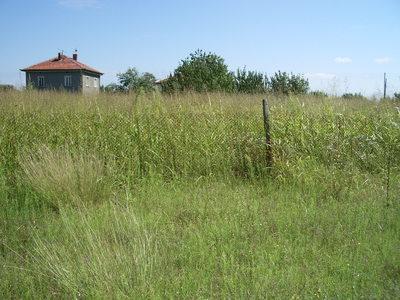 Nice rular property